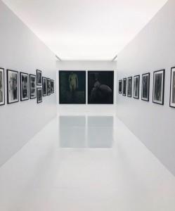 サラムーン写真展 銀座美容室ムルチュラ(muruchura)